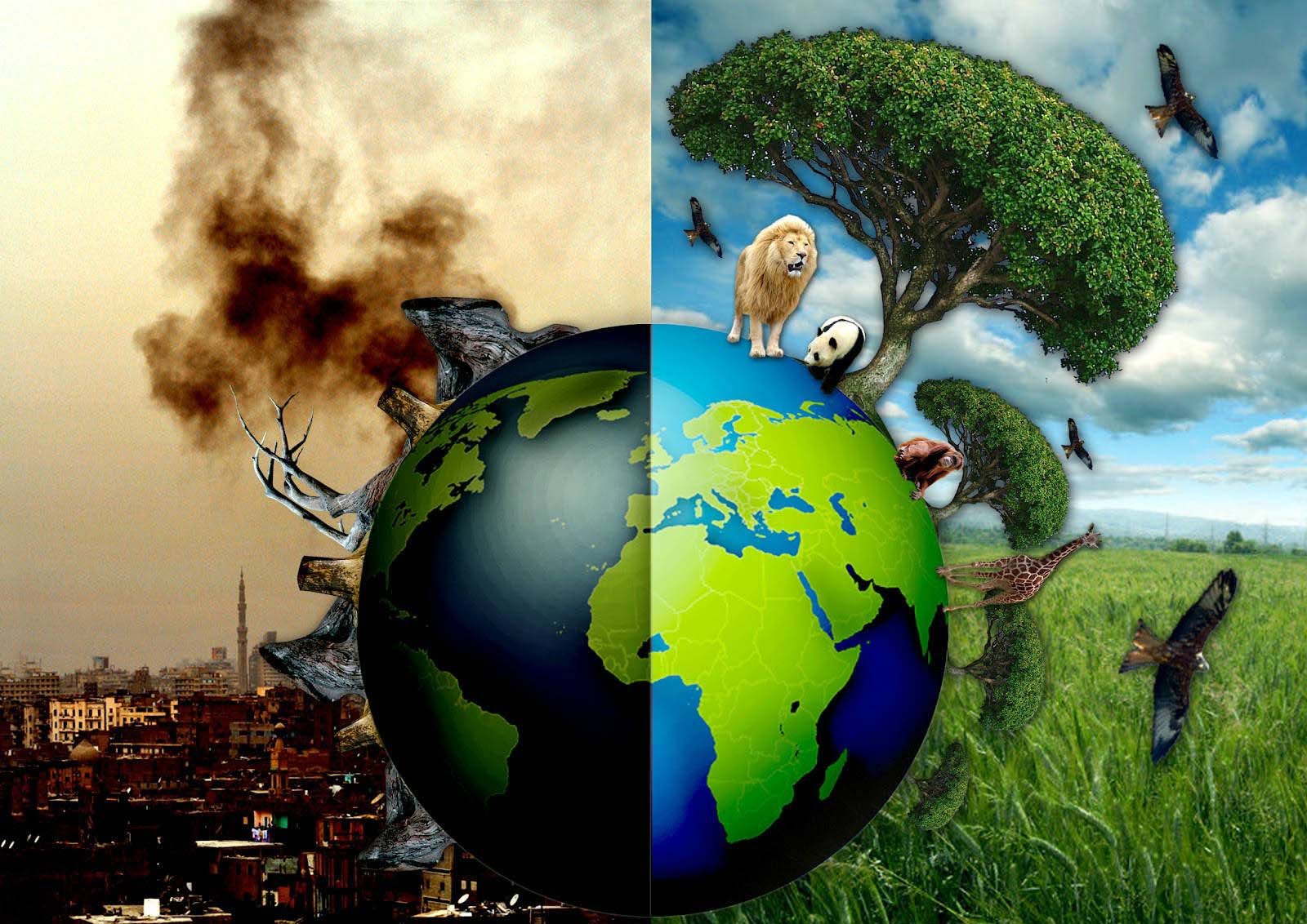 Hình ảnh cảnh báo về bảo vệ môi trường