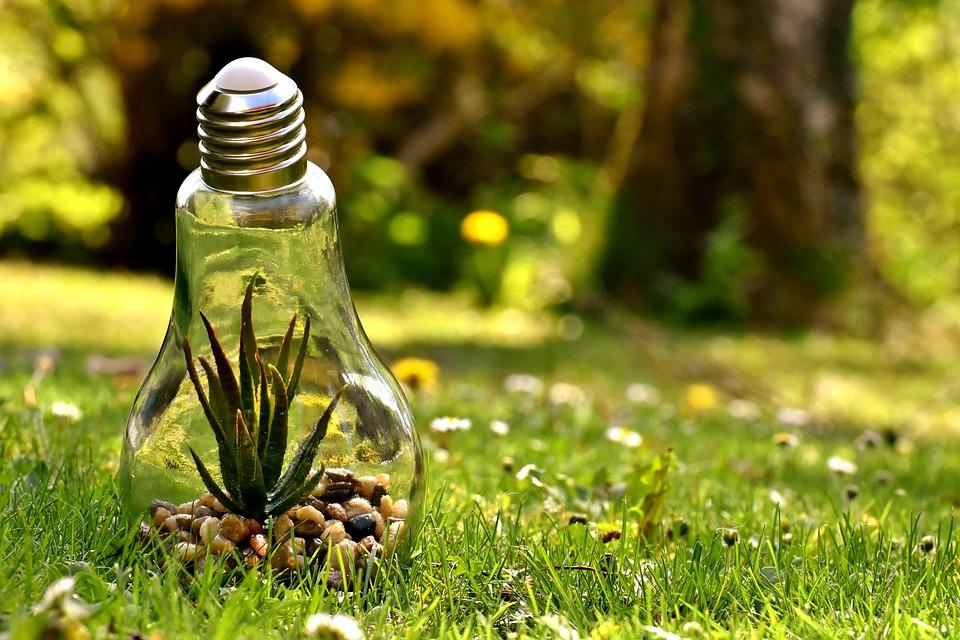 Hình ảnh đẹp bảo vệ môi trường