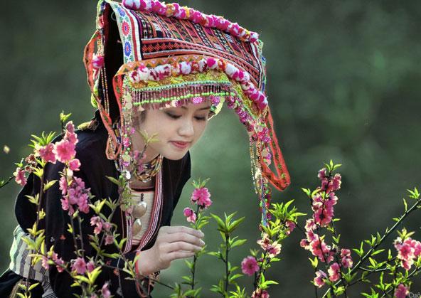 Hình ảnh thiếu nữ dân tộc bên hoa núi rừng của quê hương Việt nam