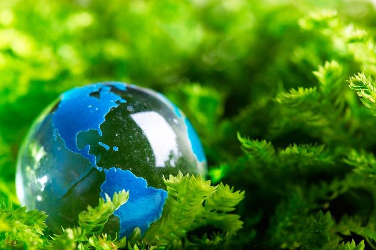 Hình ảnh ý nghĩa về môi trường sống