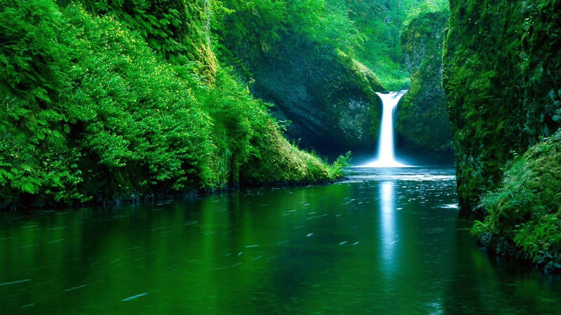 Beautiful nature wallpaper hd