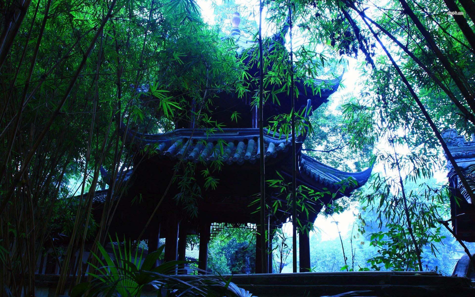 Nature wallpaper pagoda