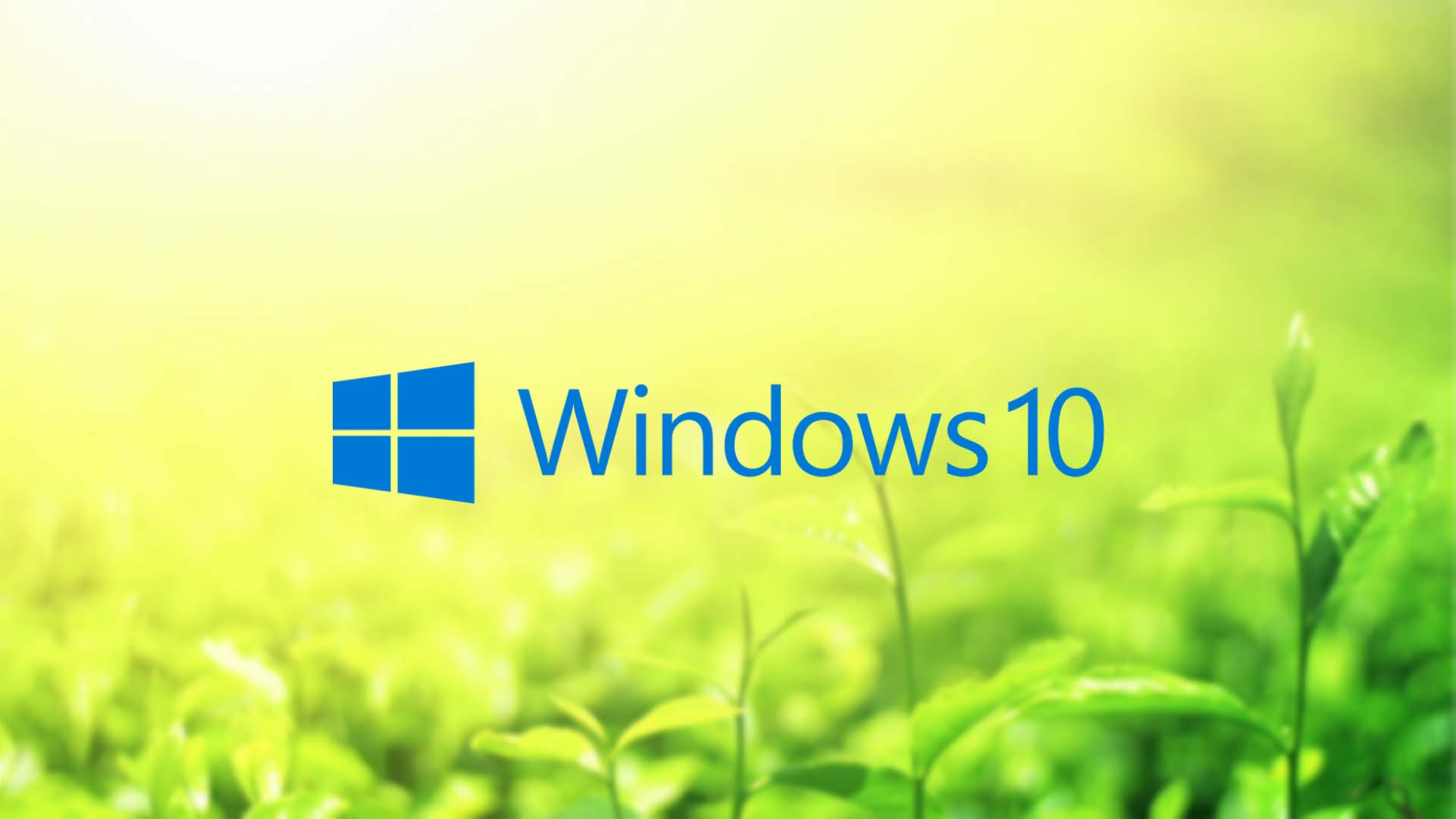 Windows 10 natural wallpaper