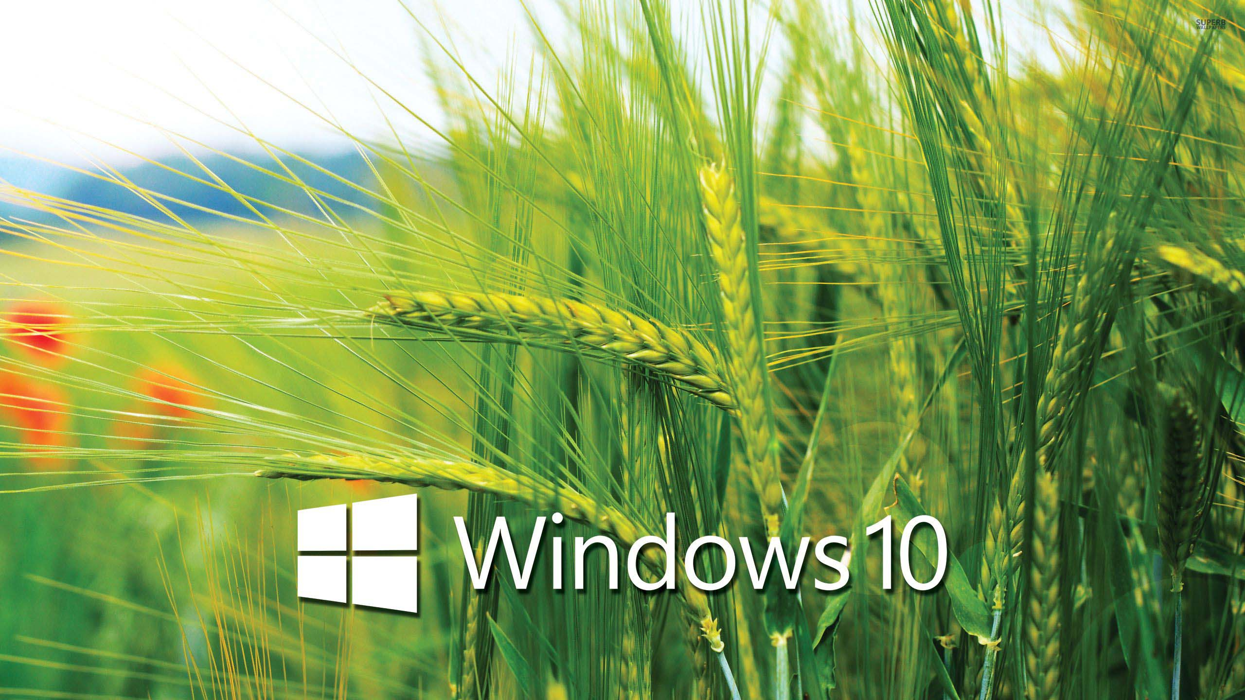 Windows 10 wallpaper for desktop