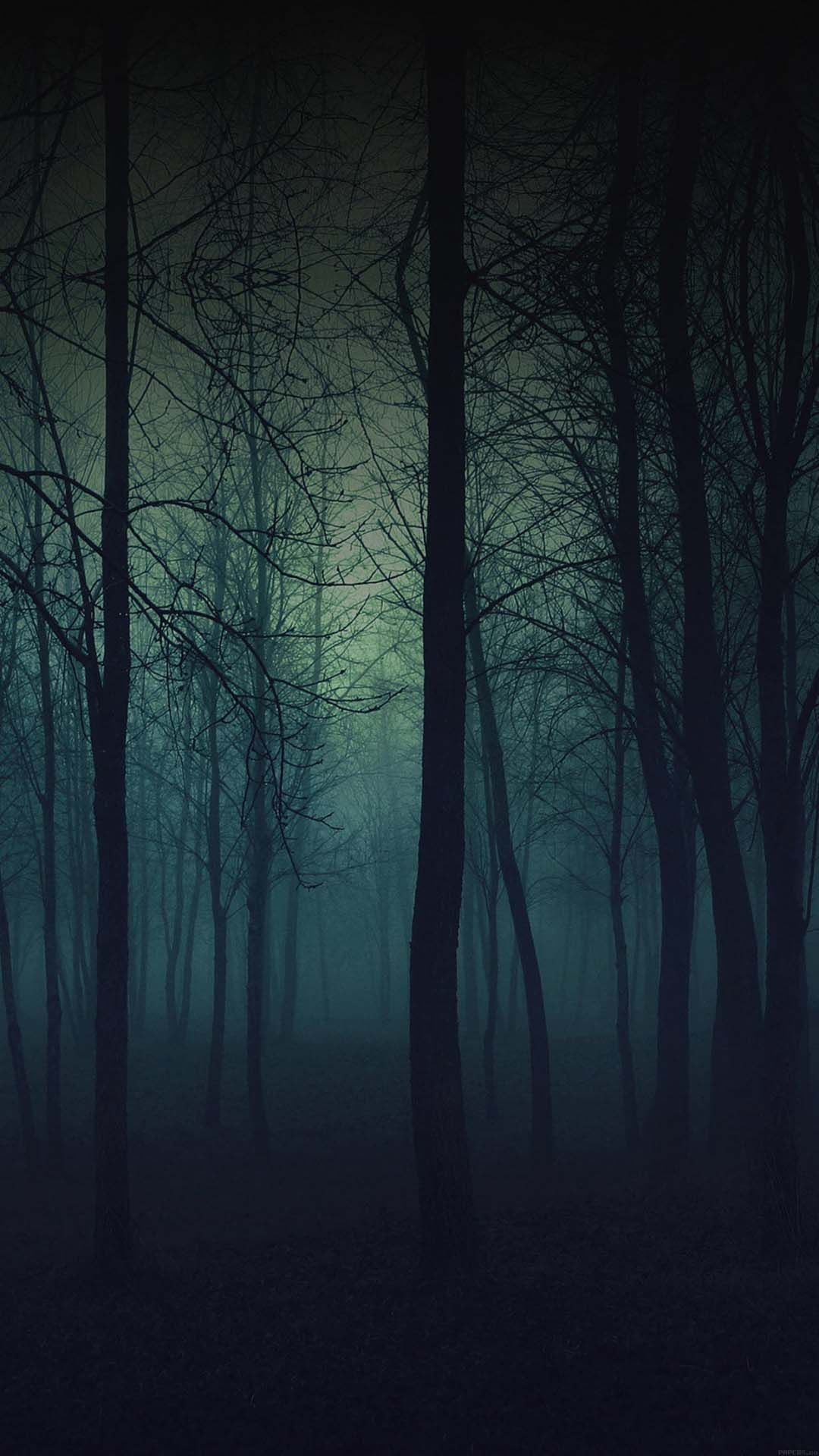 Dark forrest wallpaper mobile phone