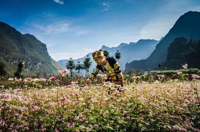 Ảnh đẹp người dân vùng cao Việt Nam