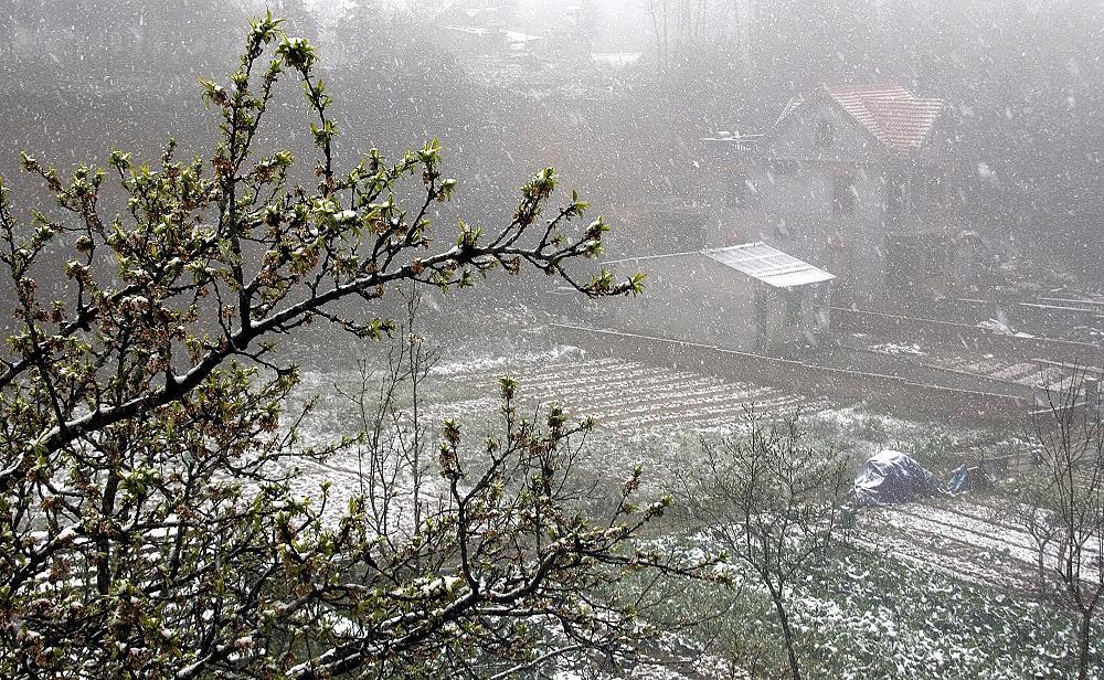 Cảnh đẹp tuyết rơi ở Việt Nam