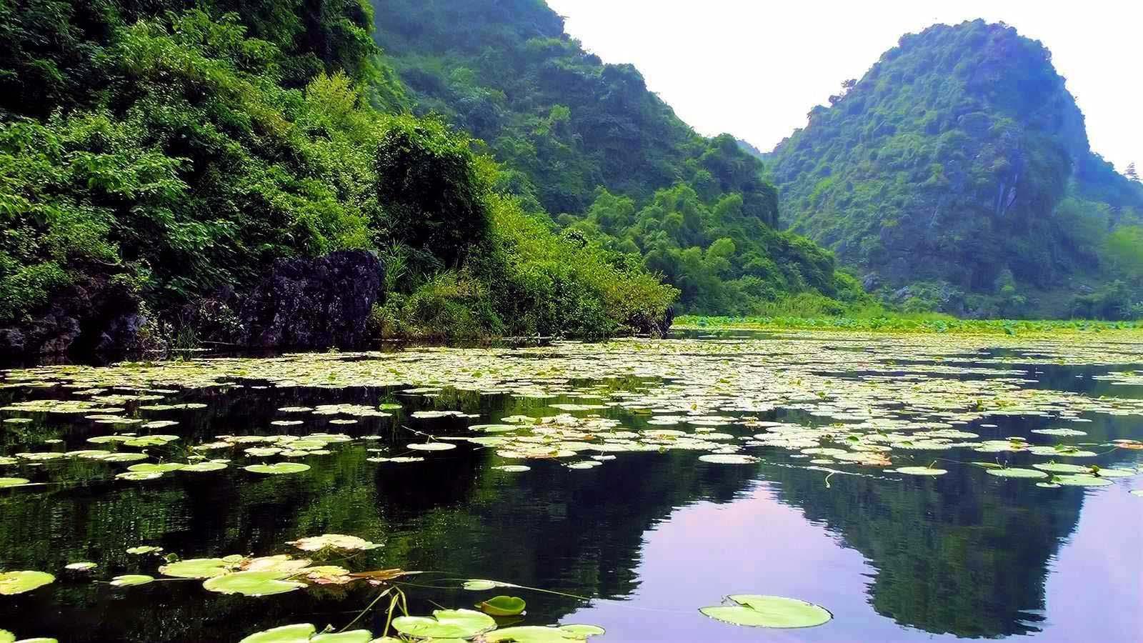 Cảnh đẹp Việt Nam hấp dẫn