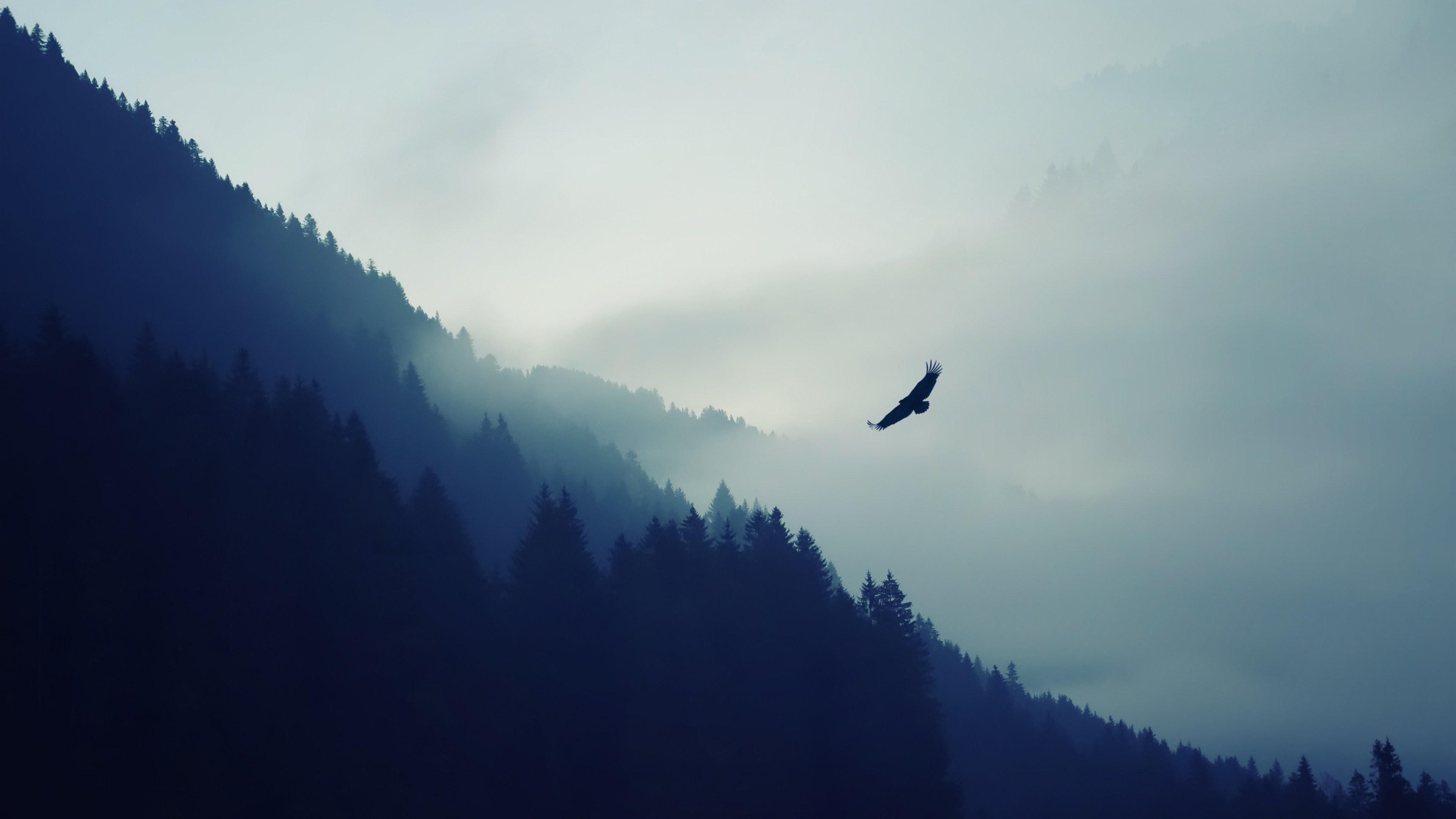 Hình nền phong cảnh thiên nhiên đẹp nhất