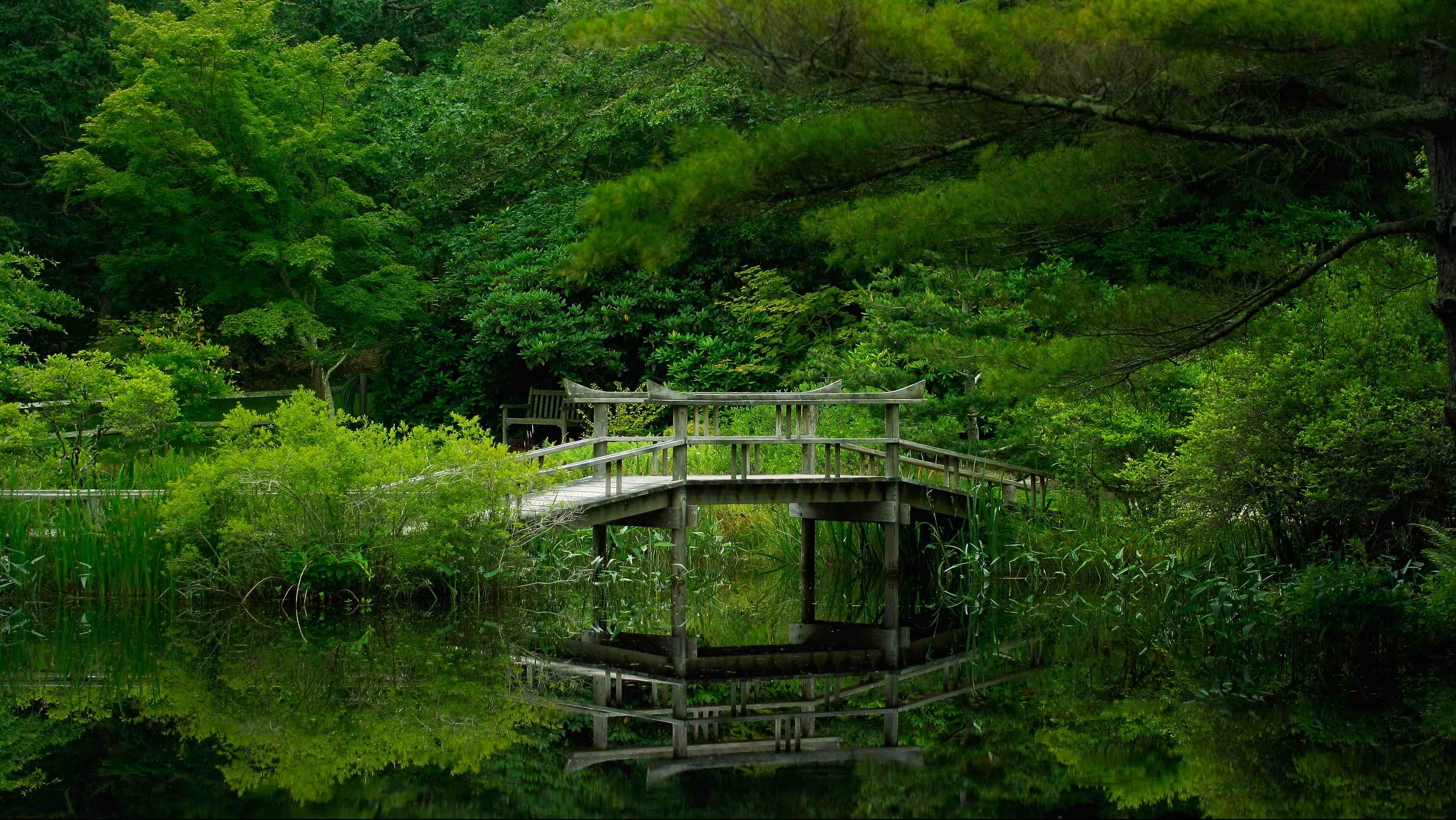 Hình nền phong cảnh thiên nhiên đẹp