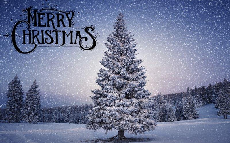 Thiệp mừng giáng sinh đẹp