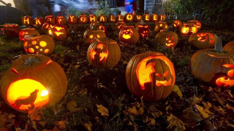 Những quả bí ngô halloween đẹp nhất