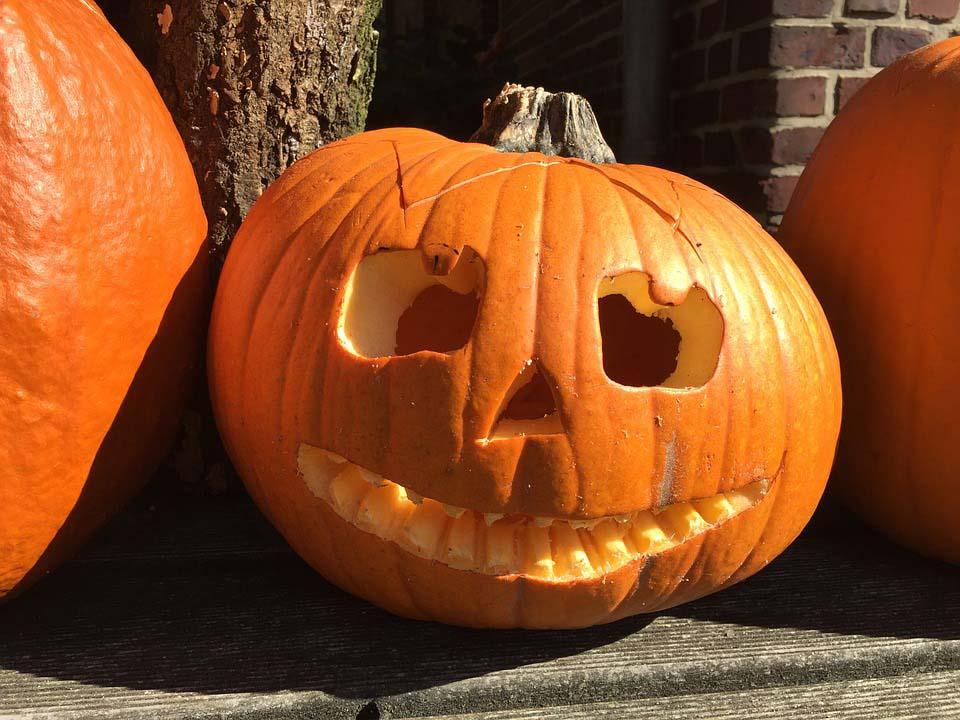 Quả bí ngô halloween đẹp