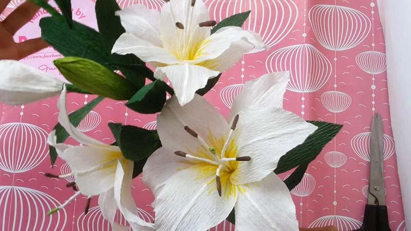 Hình ảnh cách làm hoa Ly đẹp và ấn tượng nhất