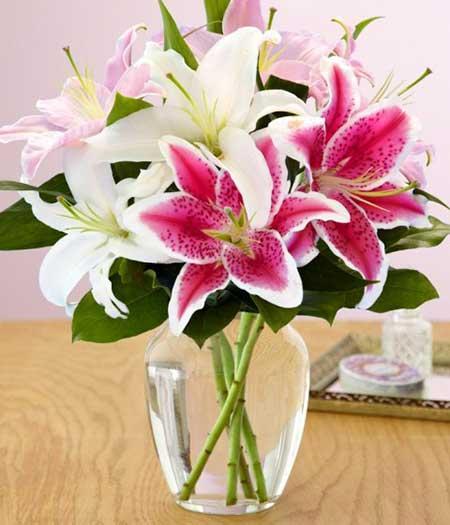 Hình ảnh cắm hoa Ly đẹp