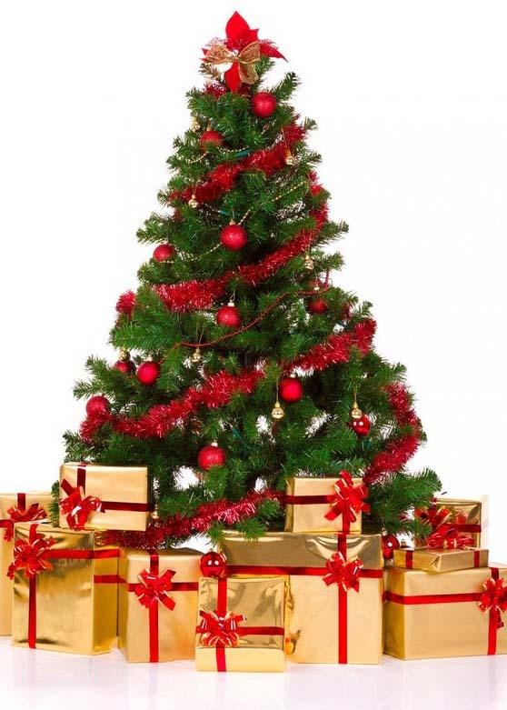 Hình ảnh cây thông Noel