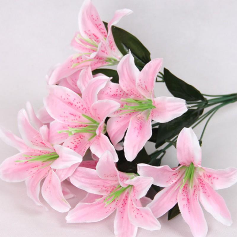 Hình ảnh hoa Ly màu hồng nhạt đẹp
