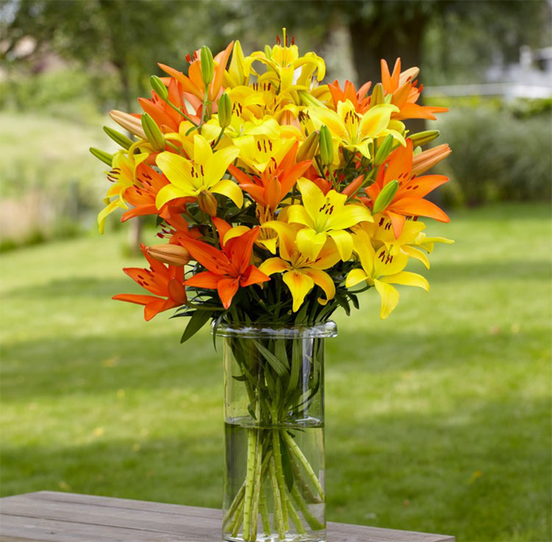 Tuyển chọn hình ảnh cắm hoa ly để giữ được lâu nhất
