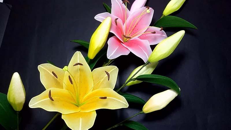 Tuyển tập cách làm hình ảnh hoa Ly giả đẹp nhất