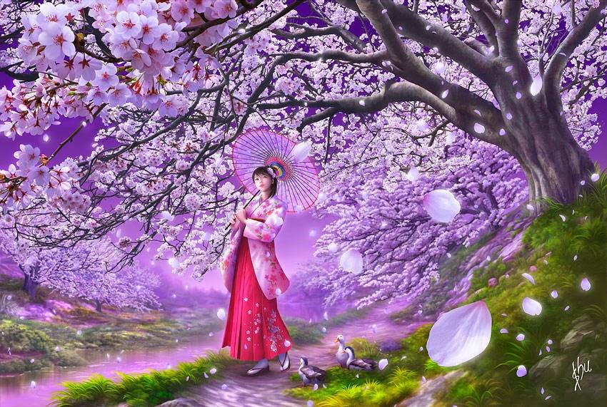 Hình ảnh vẽ hoa anh đào Nhật bản với cô gái Nhật kiêu sa đẹp nhất