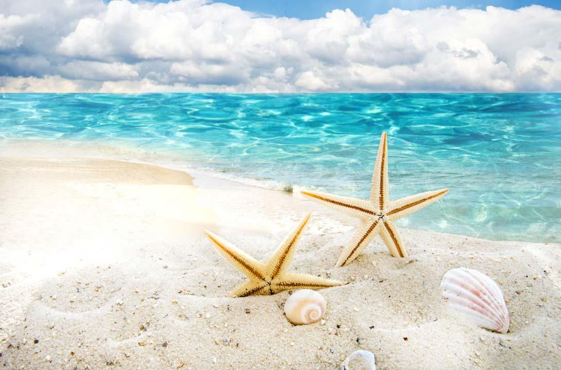 Hình ảnh biển mùa hè đẹp