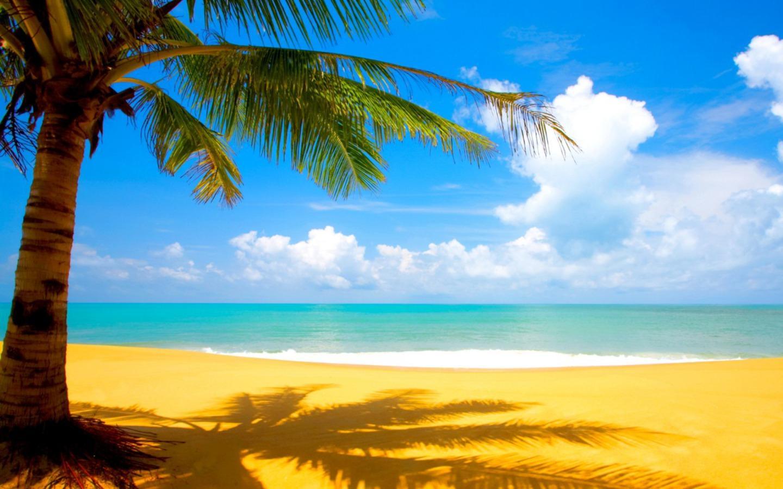 Hình ảnh biển nắng ngày hè