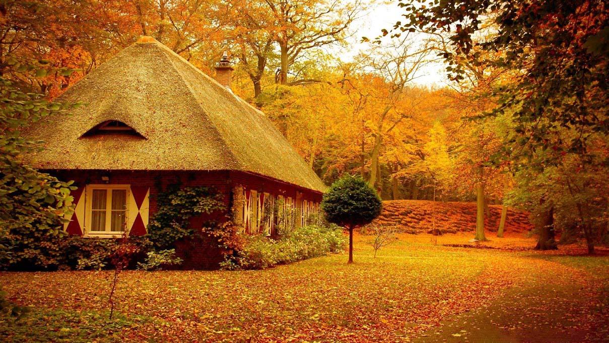 Hình ảnh căn nhà mùa thu