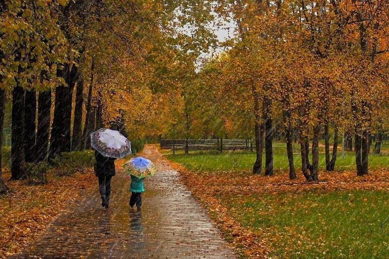 Hình ảnh cơn mưa mùa thu