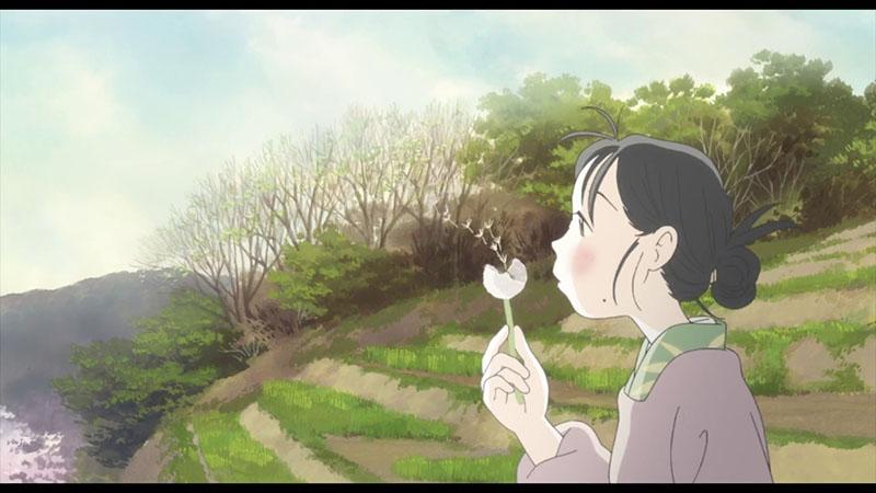 Hình ảnh hoạt hình về hoa bồ công anh đẹp nhất
