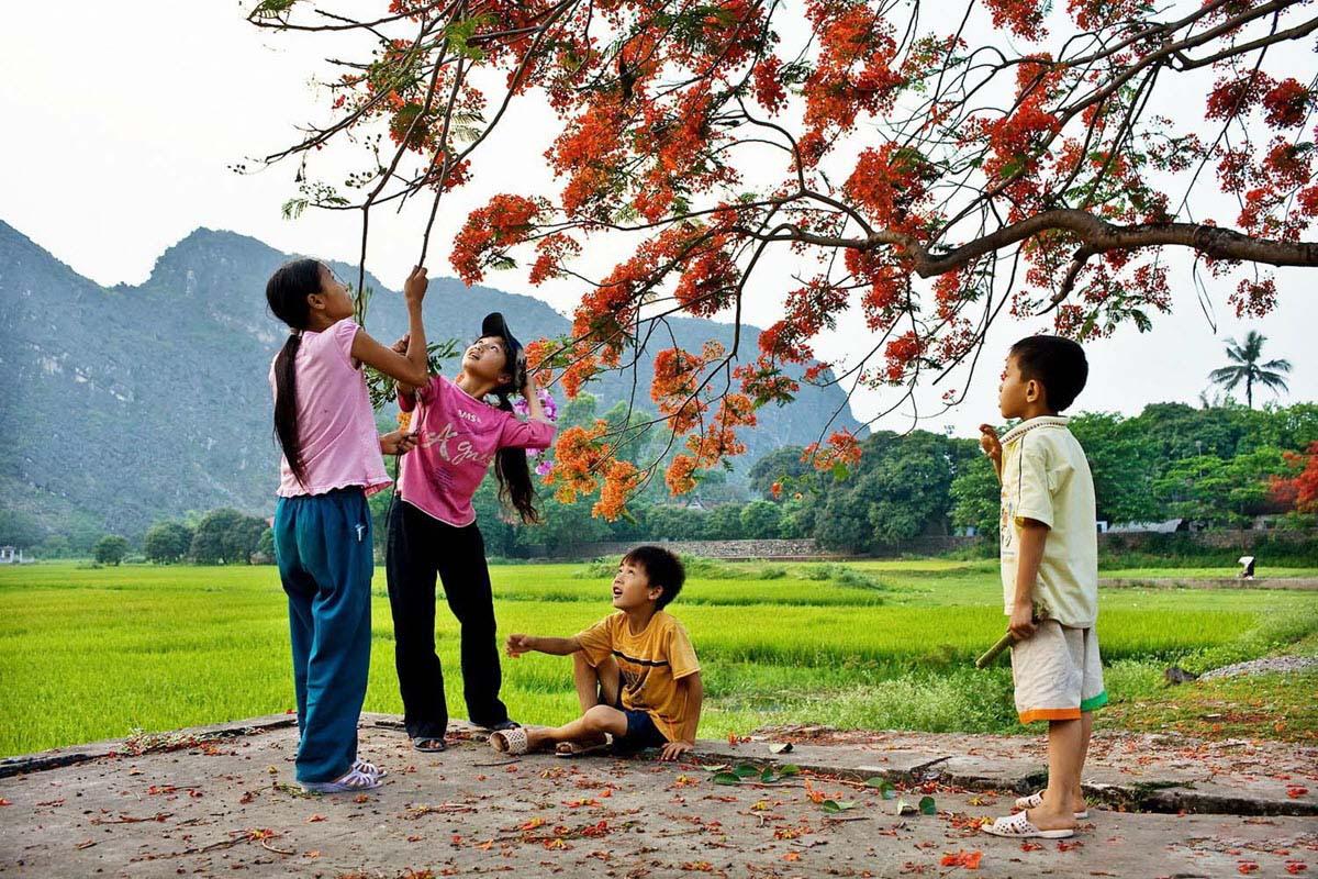 Hình ảnh mùa hè của trẻ em