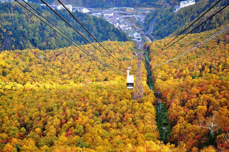 Hình ảnh mùa thu vàng đẹp nhất