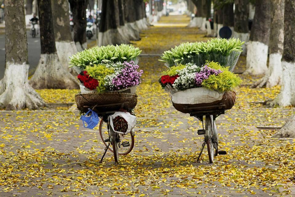 Hình ảnh mùa thu Việt Nam