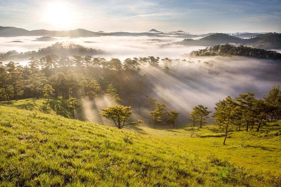 Hình ảnh nắng sớm mùa thu