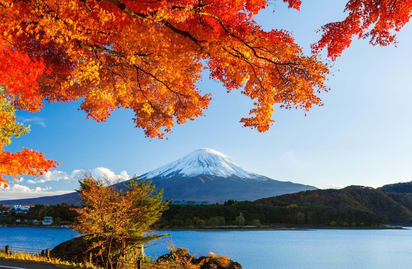 Những ảnh đẹp nhất về mùa thu