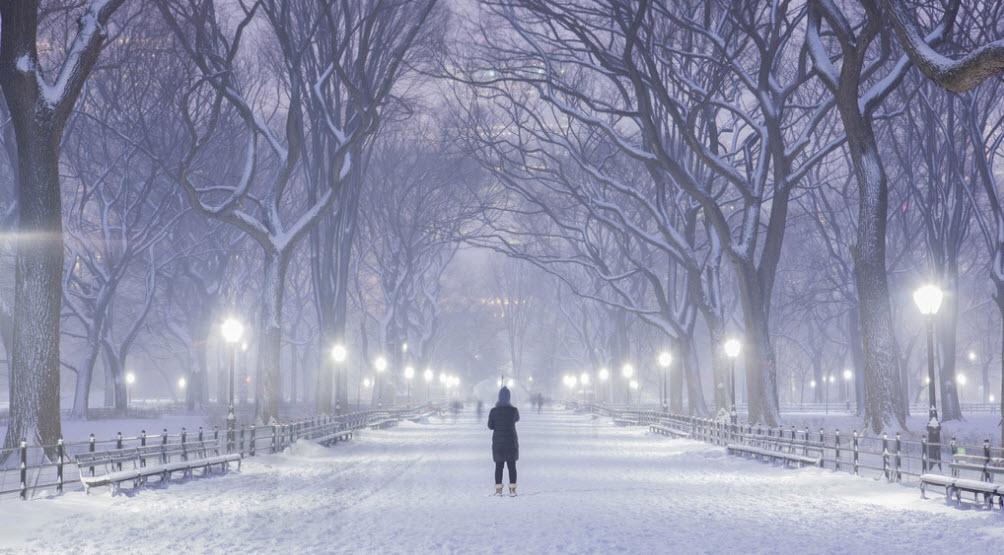 Hình ảnh cô đơn mùa đông