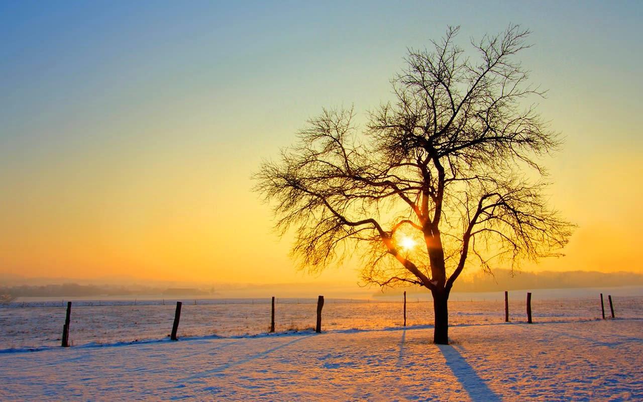 Hình ảnh đẹp về mùa đông buồn