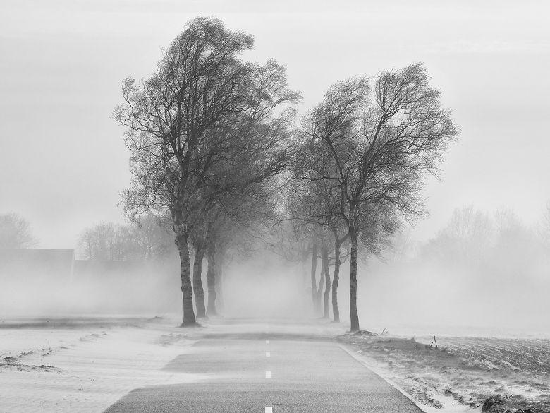 Hình ảnh mùa đông buồn