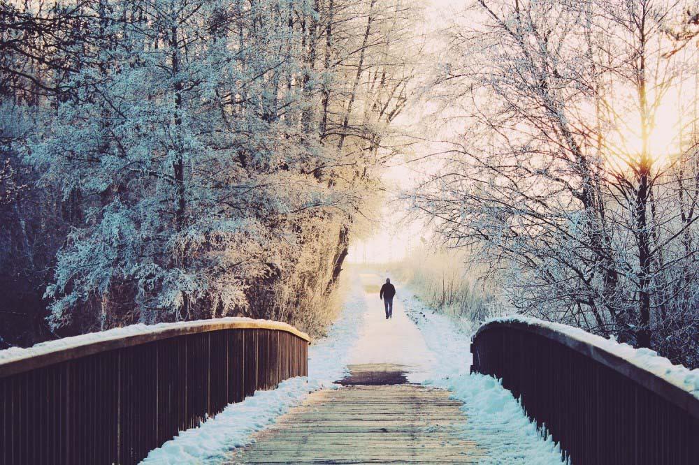 Hình ảnh mùa đông lạnh lẽo