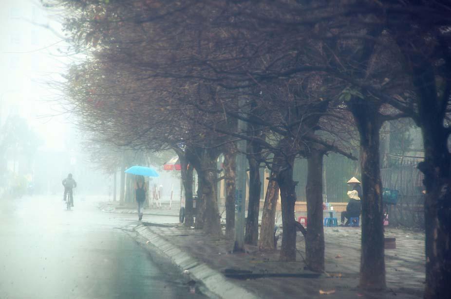 Hình ảnh mưa phố mùa đông