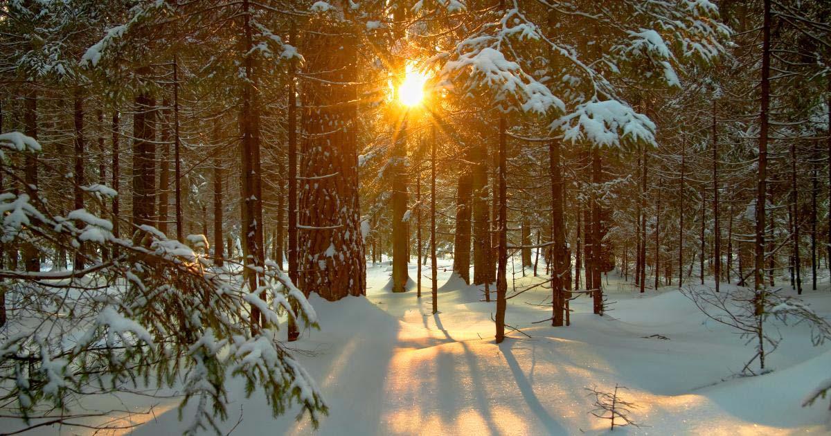 Những hình ảnh đẹp về mùa đông