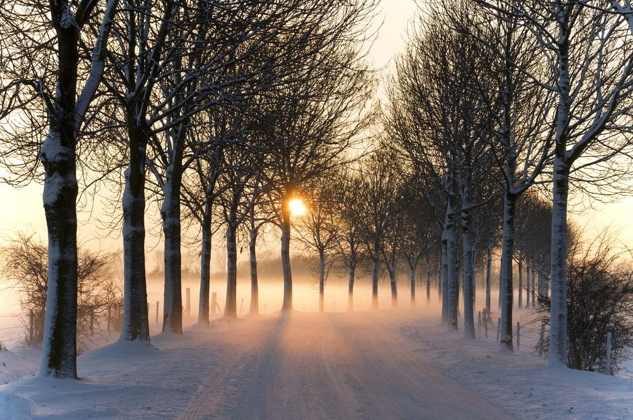 Những hình ảnh mùa đông đẹp
