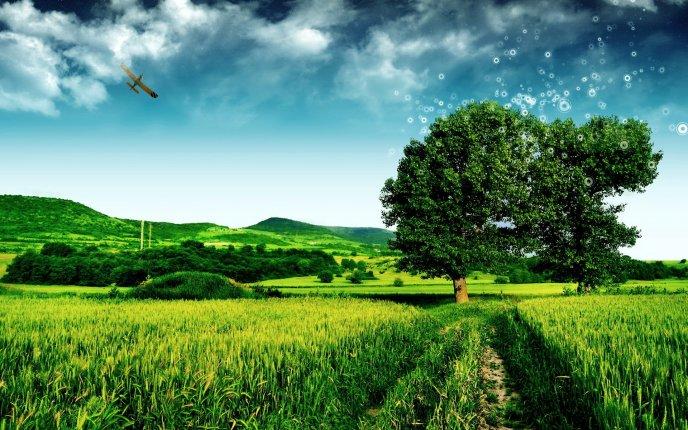 Hình ảnh thiên nhiên màu xanh đẹp